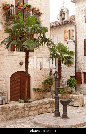 Courtyard with palm trees in the old town of Kotor in Montenegro. - Stock Photo