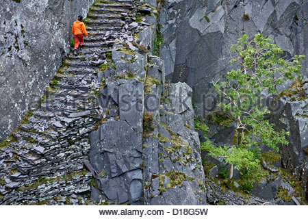Climber climbing stairs in rocky cliff - Stock Photo
