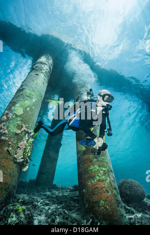 Diver examining underwater shipwreck - Stock Photo
