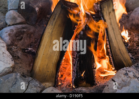 Camp fire close up - Stock Photo