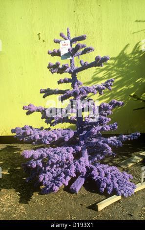 small purple christmas tree los angeles ca stock photo - Small Purple Christmas Tree
