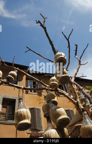 wine bottles hanging from tree outside restaurant in trastevere rome italy - Stock Photo