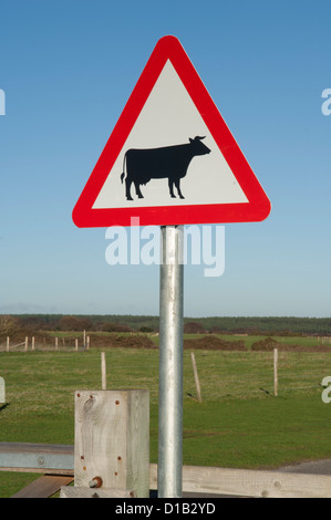 British Highways triangular road sign - Stock Photo