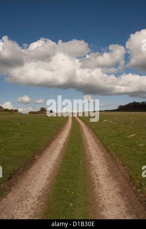 Green lane track - Stock Photo