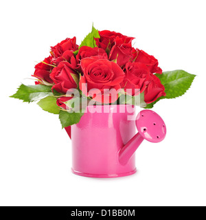 bouquet of red roses in a pink watering can isolated on white background - Stock Photo