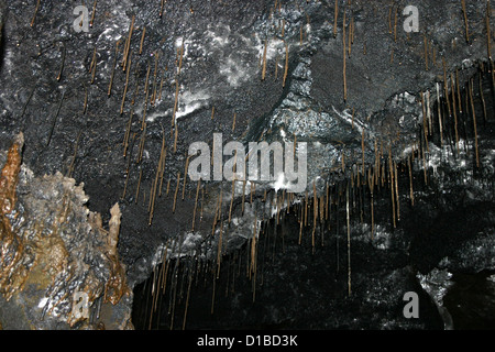 Stalactites and stalagmites in lava tube, Hawaii, USA - Stock Photo