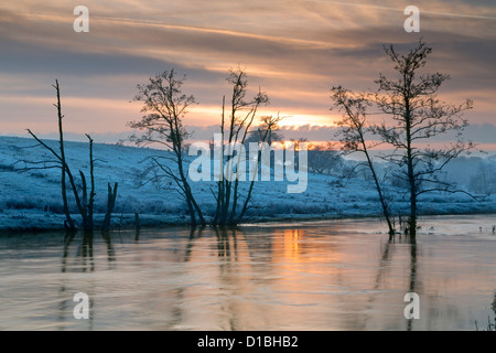 Stark leafless trees and a setting winter sun over the flooded river Derwent in north Yorkshire. - Stock Photo