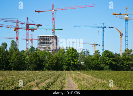 Cranes on a construction site near a field - Stock Photo