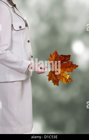 a woman in a white skirt suit is holding an autumnal red leaf from a sycamore tree - Stock Photo
