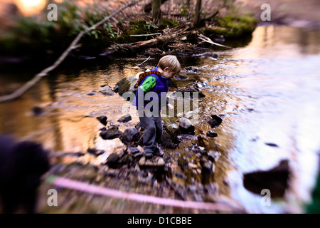 Two little boys playing in and around a stream on a fall day with their dog - Stock Photo