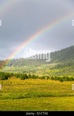 Double rainbow over meadow and forest - Stock Photo