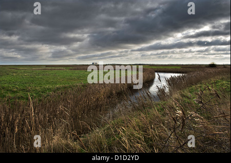 United Kingdom Blackwater Estuary National Nature Reserve