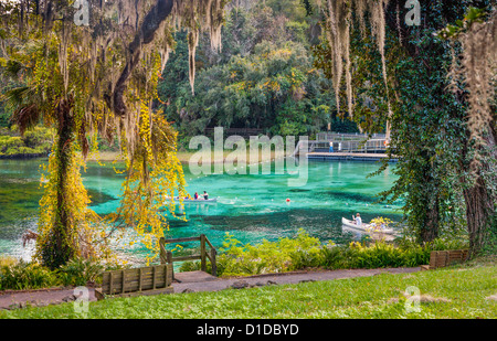 Canoes near swimming area of the Rainbow River in Rainbow River State Park, Florida - Stock Photo