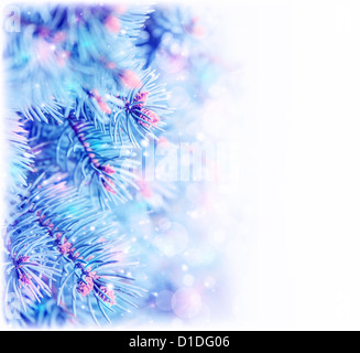 Picture of frozen pine tree border, copy space, Christmas tree covered hoar isolated on white background, spruce - Stock Photo