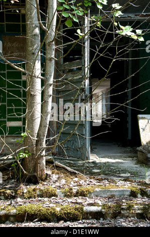 Chernobyl disaster results. This is an enterance in abandoned school in small city Pripyat - Stock Photo