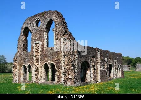 Waverley Abbey, near Farnham, Surrey, England, United Kingdom, Europe - Stock Photo