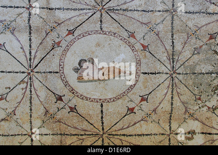 Mosaic of Hypnos, Greek god of dreams, dormitory of the Roman villa, Risan, Kotor Bay, Montenegro, Europe - Stock Photo