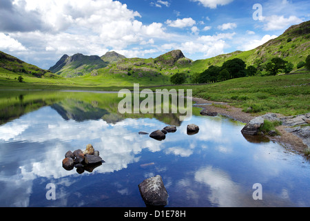 Blea Tarn and Langdale Pikes, Lake District National Park, Cumbria, England, United Kingdom, Europe - Stock Photo
