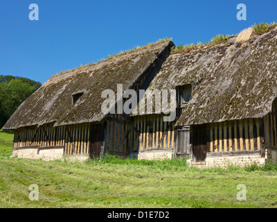 Typical ancient thatched and half timbered farm buildings in a meadow, Pierrefitte en Auge, Calvados, Normandy, - Stock Photo