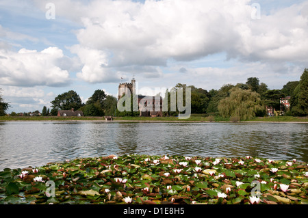 St Chads Church Lichfield Staffordshire England seen across Stowe Pool with water lilies in foreground - Stock Photo