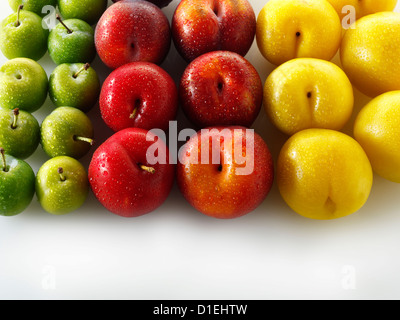 Mixed red, yellow and green plums against a white background - Stock Photo