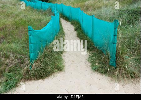 green plastic fencing on sand dunes pathway, hemsby, norfolk, england - Stock Photo
