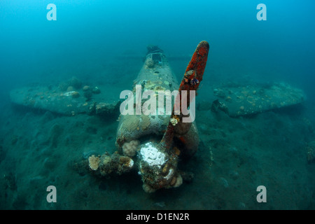 Wreck of a japanese zero fighter plan in Kimbe Bay, Papua New Guinea - Stock Photo