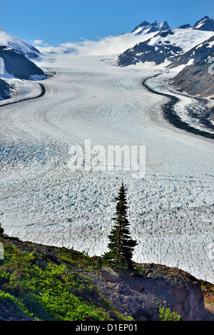 The center arm of the Salmon Glacier - Stock Photo