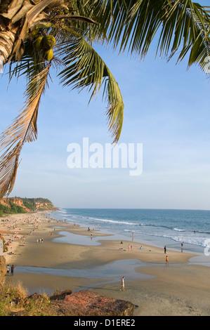 Vertical aerial view of people relaxing on Papanasam beach in Varkala, Kerala. - Stock Photo