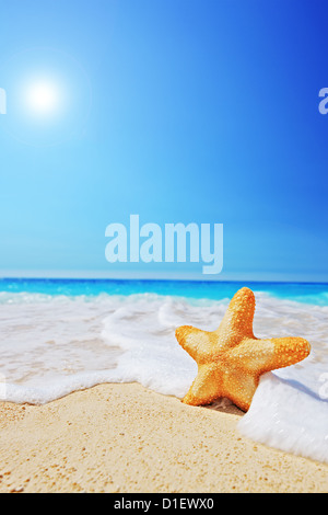 A starfish on a beach with clear sky and wave, Greece - Stock Photo