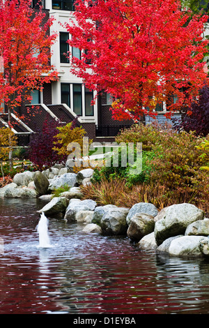 Shades of Autumn in a landscaped garden, Vancouver, Canada - Stock Photo