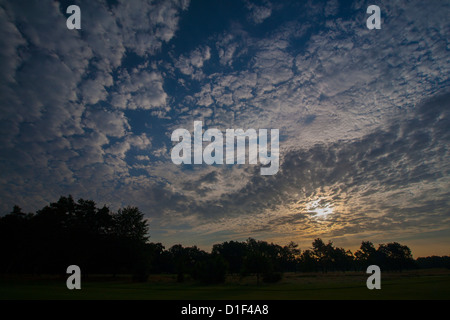 High clouds at sunrise over a line of trees with sun breaking through. - Stock Photo