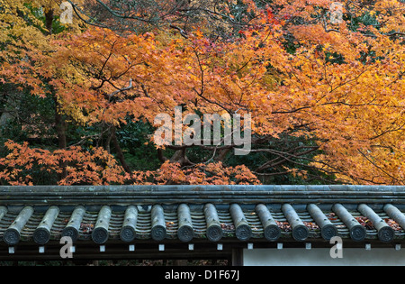 Kyoto, Japan. Autumn colours in the grounds of Nanzen-ji temple - Stock Photo
