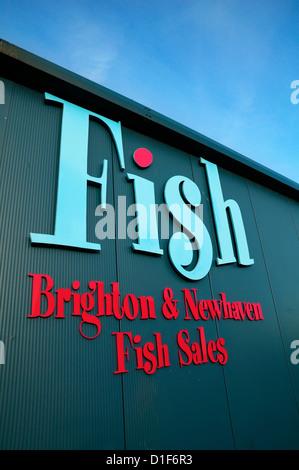 FISH Brighton & Newhaven Fish Sales, Shoreham, East Sussex, UK - Stock Photo