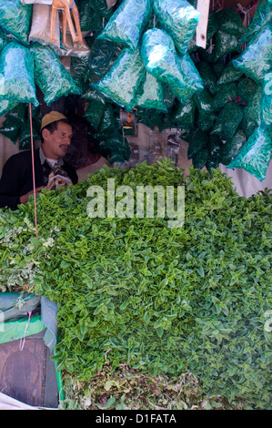 A stall with piles of fresh mint for sale in the main square, (Jemaa El Fna), Marrakech, Morocco, North Africa, - Stock Photo