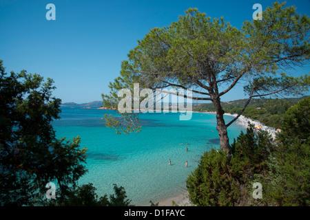 An elevated view of Palombaggia Beach near Porto-Vecchio, Corsica, France, Mediterranean, Europe - Stock Photo