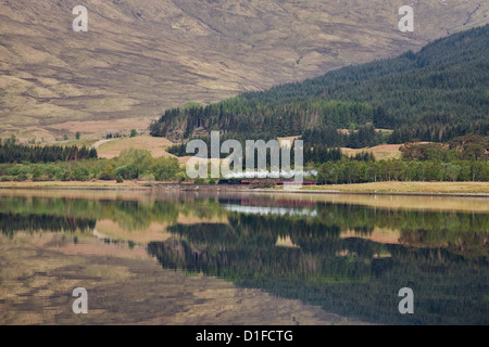 The Jacobite, Fort William to Mallaig railway, Loch Eil, Lochaber, Scotland, United Kingdom, Europe - Stock Photo