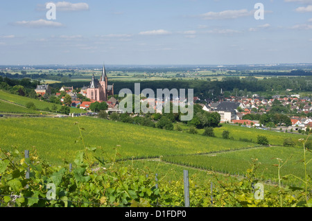 View east over the Rhine Valley and St. Katherine's Church in the wine town of Oppenheim, Rhineland Palatinate, - Stock Photo