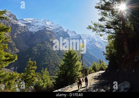 Marsyangdi River Valley, Annapurna Conservation Area, Gandaki, Western Region (Pashchimanchal), Nepal, Himalayas, - Stock Photo