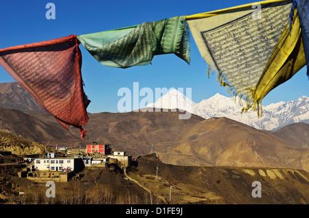 Muktinath and Dhaulagiri Himal, Annapurna Conservation Area, Dhawalagiri (Dhaulagiri), Western Region (Pashchimanchal), - Stock Photo