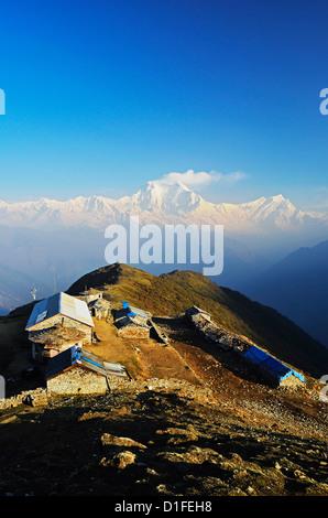 Dhaulagiri Himal seen from Khopra, Annapurna Conservation Area, Dhawalagiri (Dhaulagiri), Western Region (Pashchimanchal), - Stock Photo