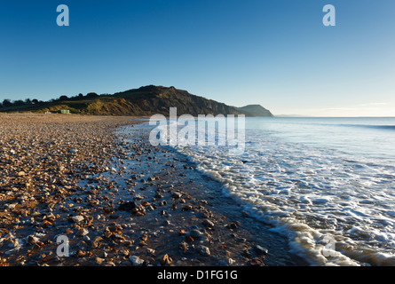 Fossil Rich cliffs at Charmouth Beach. Jurassic Coast World Heritage Site. Dorset. England. UK. - Stock Photo