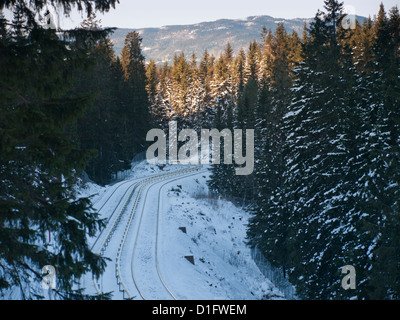 In Oslo Norway the metro line will take you all the way into the winter forest where the ski tracks start - Stock Photo