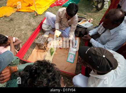 Fortune telling green parakeet picking tarot cards at Sonepur Cattle Fair, Bihar, India, Asia - Stock Photo