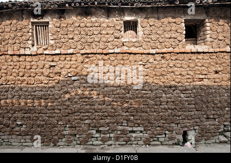 Village house with walls covered completely with hand shaped dung pats left there to dry in the sun, Sonepur, Bihar, - Stock Photo