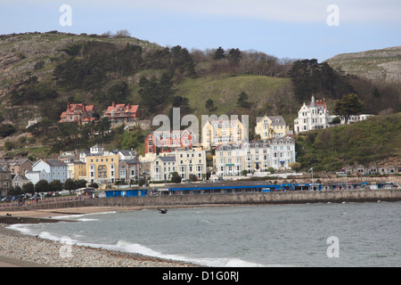 Seaside, Llandudno, Conwy County, North Wales, Wales, United Kingdom, Europe - Stock Photo