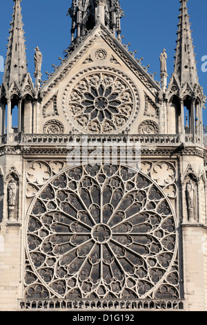 Southern facade of Notre-Dame de Paris cathedral, Paris, France, Europe - Stock Photo