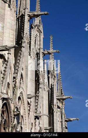 Gargoyles on Notre Dame Cathedral, Paris, France, Europe - Stock Photo