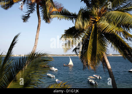 View from the Peponi hotel, Shela, Lamu Island, Kenya, East Africa, Indian Ocean, Africa - Stock Photo