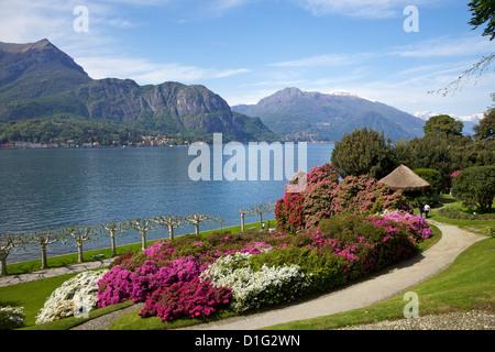 Gardens of Villa Melzi, Bellagio, Lake Como, Lombardy, Italian Lakes, Italy, Europe - Stock Photo
